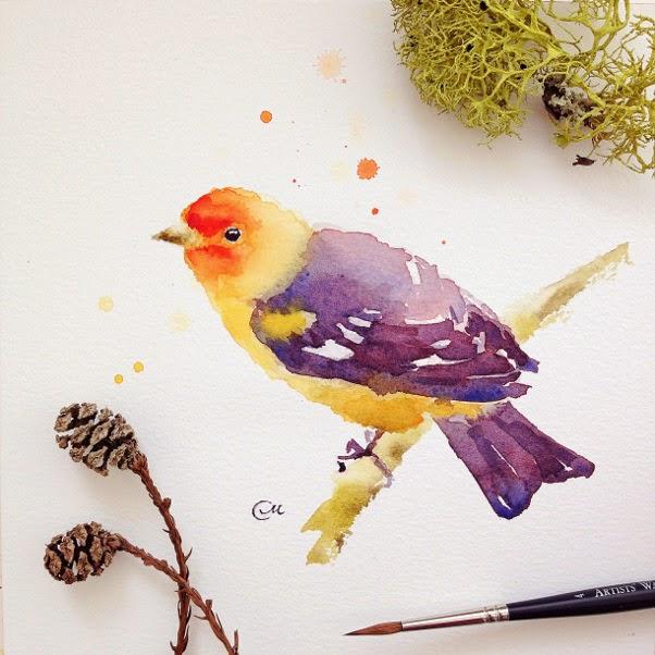 bird-inst