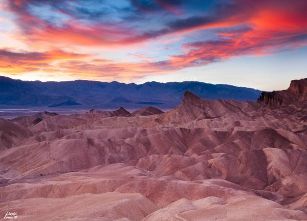 desert_glory_by_dmitri_fomin600_432