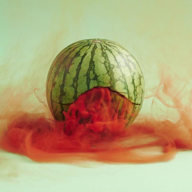 Das geheime Leben von Obst und Gemüse von Maciek Jasik