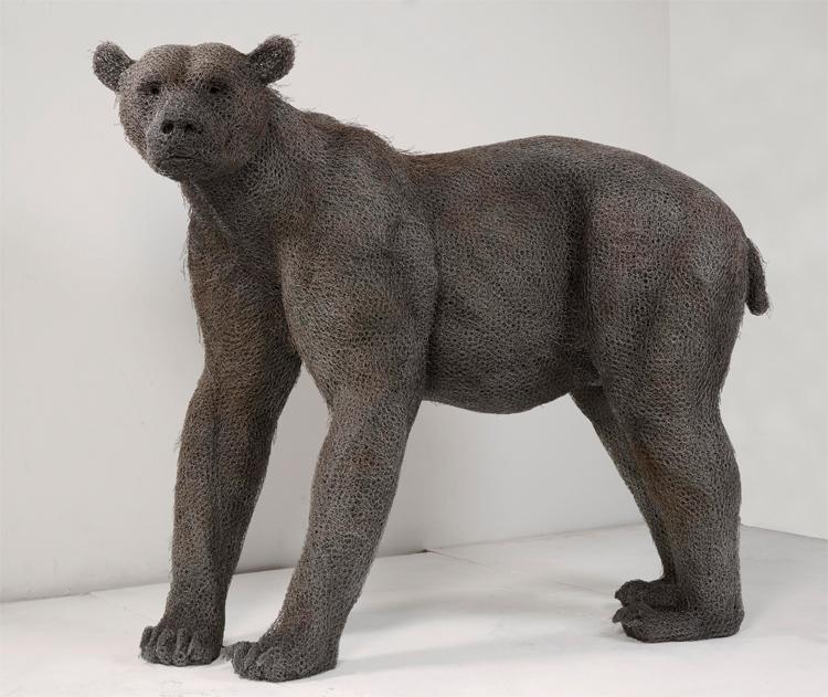 bear1-big