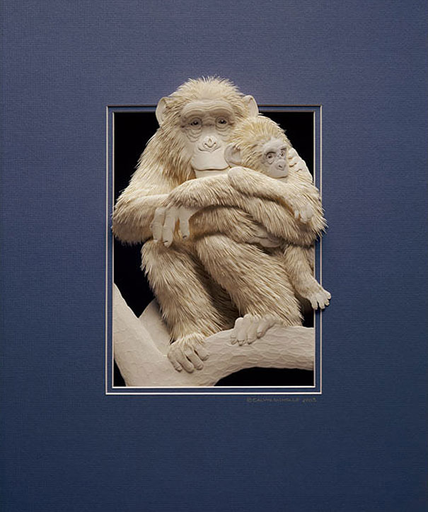 paper-sculptures-calvin-nicholls-11
