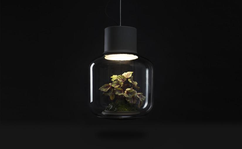"""Ökosystem Lampe von """"Nui Studio"""""""