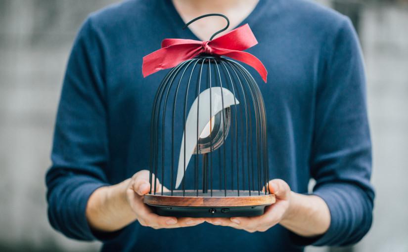 JinGoo: Singvogel im Käfig