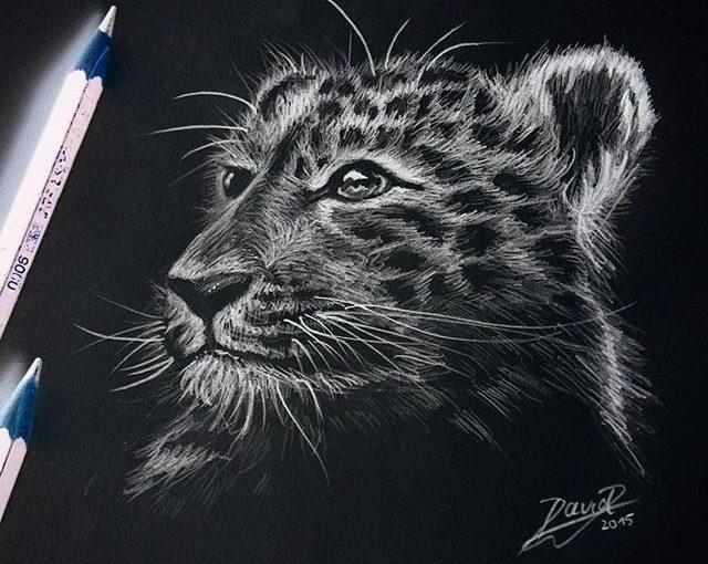 Wunderschöne Zeichnungen von David Ambarzumjan