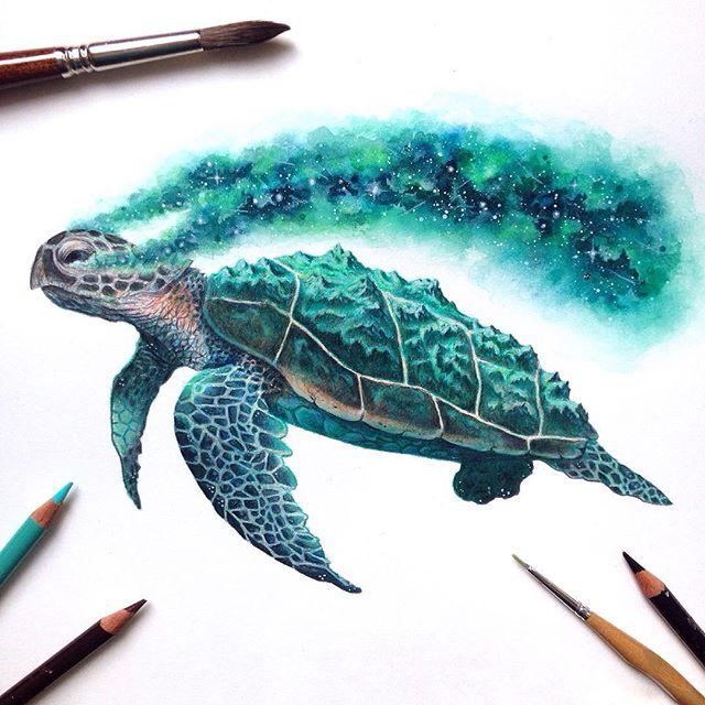 Wunderschöne Zeichnungen von David Ambarzumjan: eine Schildkröte