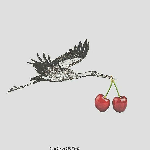Storch mit Kirschen