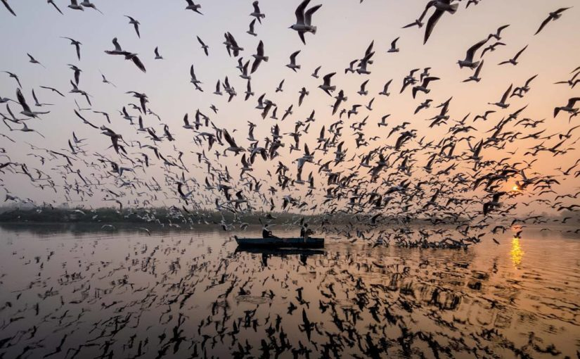 Ausdrucksvolle Fotografien von Navin Vatsa