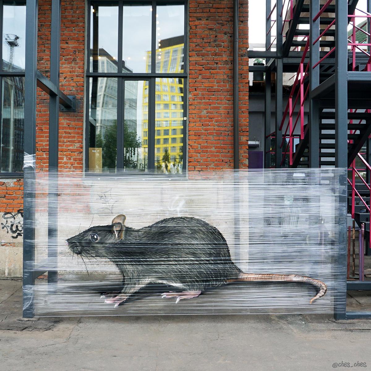 Ratte-Cellograffiti
