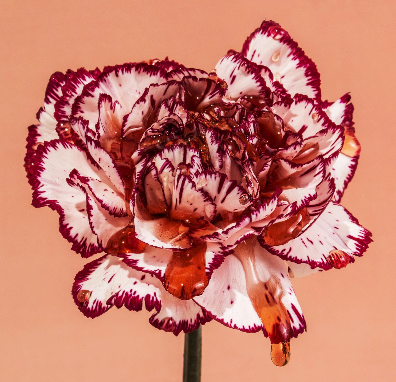 "Serie ""Flowers"""