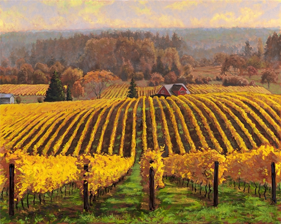 """Sokolblosser Vineyard"""